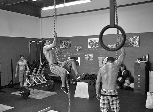 Gym Climbing Ropes