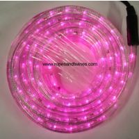 Pink LED Rope Light 8m for in & Outdoor use & controller
